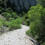 Chemin pour la calanque d'En-Vau