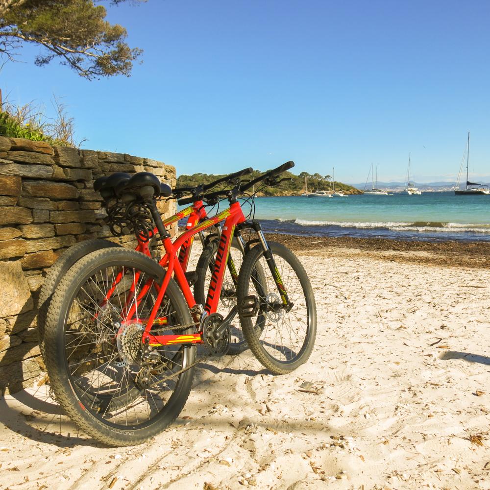 Nos vélos pour la journée
