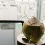 Dernière coconut